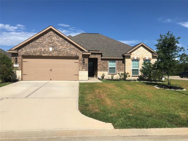 20502 Iron Seat Drive, Hockley, TX 77447 (MLS #20467104) :: Christy Buck Team