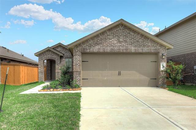 13018 Dancing Reed Drive, Texas City, TX 77568 (MLS #20473028) :: The SOLD by George Team