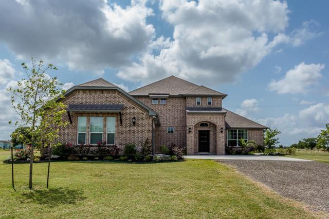 11834 Bisonte Street, Needville, TX 77461 (MLS #20491853) :: Team Sansone