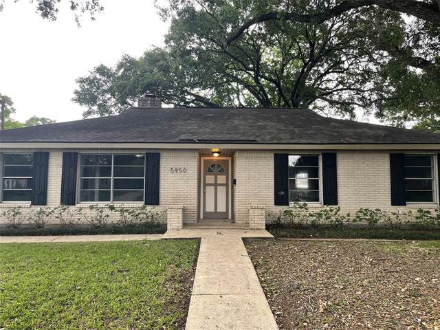 5950 Beaudry Drive, Houston, TX 77035 (MLS #20536248) :: Guevara Backman