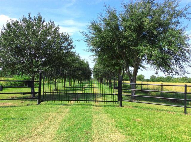21755 E Kickapoo Road, Waller, TX 77484 (MLS #20539512) :: Christy Buck Team