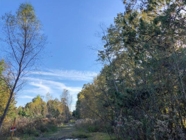 12 Ac Off Tram Road, Splendora, TX 77372 (MLS #20556758) :: Connect Realty