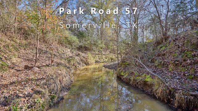 TBD (61.4 Acres) Park Road 57, Somerville, TX 77879 (MLS #20565954) :: The Bly Team