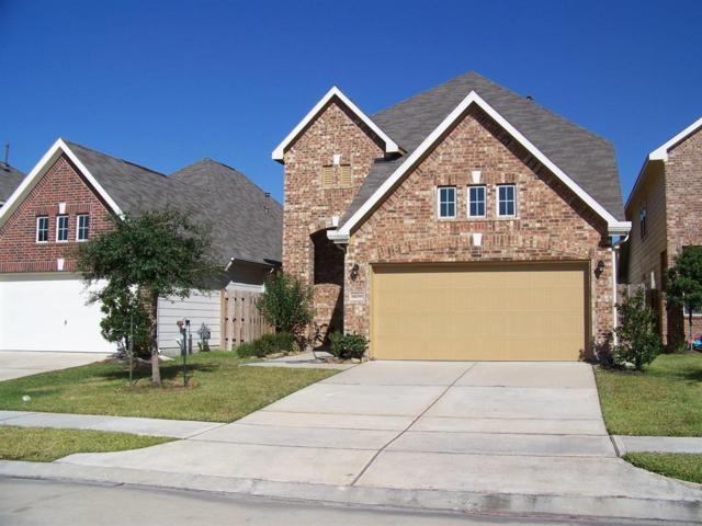 14266 Pointa Vera Drive, Houston, TX 77083 (MLS #20583133) :: Texas Home Shop Realty