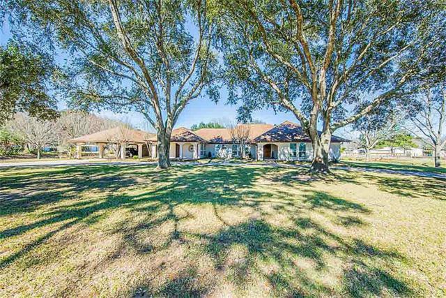 26602 Willow Lane, Katy, TX 77494 (MLS #20615538) :: Giorgi Real Estate Group