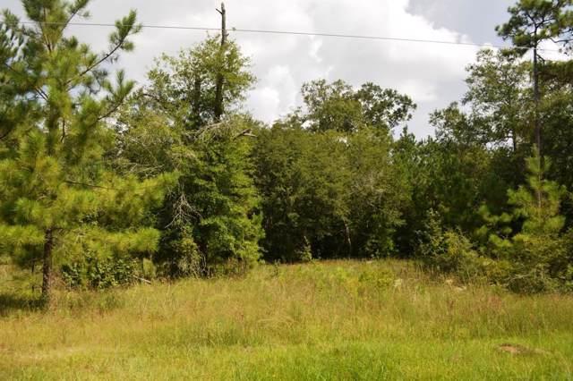 501 Big Buck Drive, Cleveland, TX 77328 (MLS #20618014) :: The Heyl Group at Keller Williams