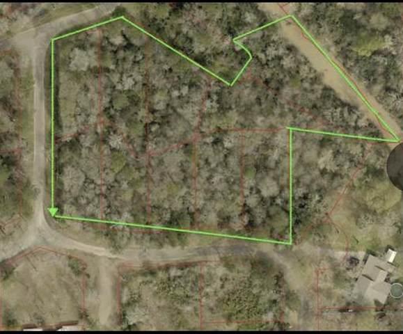 15511 Knotty Oaks Trail, Magnolia, TX 77355 (MLS #20694852) :: Homemax Properties