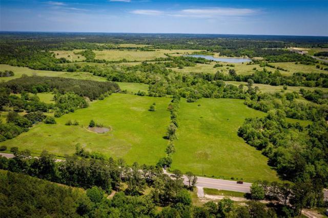 49 Acres Fm 247, Huntsville, TX 77320 (MLS #20697686) :: The Home Branch