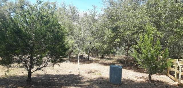 239 Pvt Rd 1125, Hallettsville, TX 77964 (MLS #20762469) :: All Cities USA Realty
