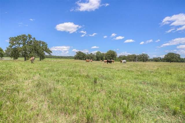 TBD Bird Farm Road, Huntsville, TX 77320 (MLS #20785056) :: Ellison Real Estate Team