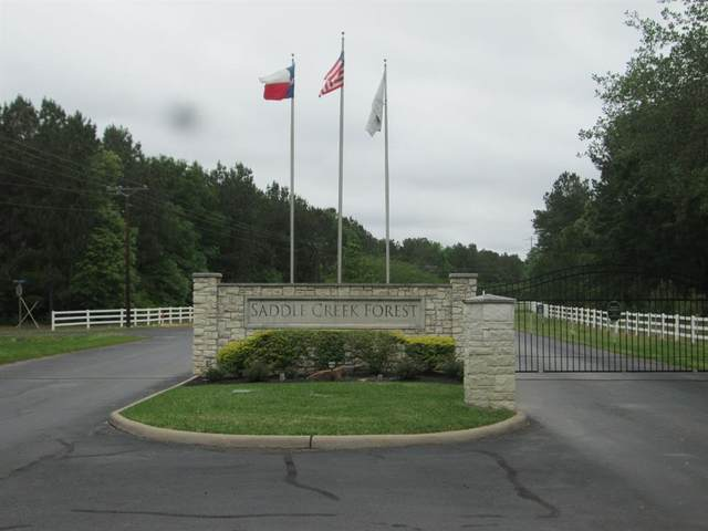 17748 Apaloosa Dr, Waller, TX 77484 (MLS #20809456) :: Michele Harmon Team