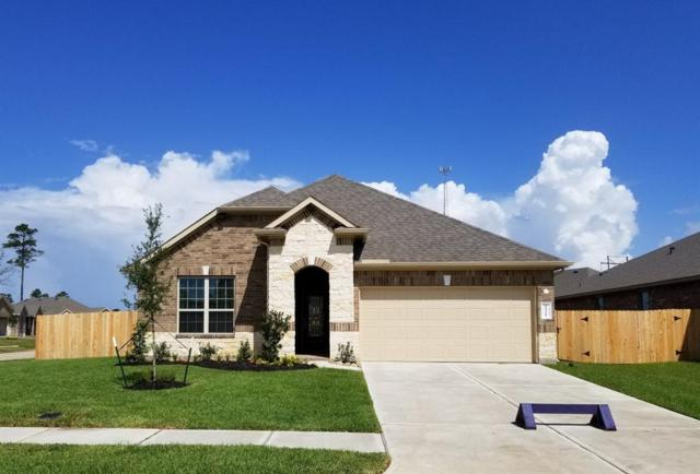 14301 Congaree Court, Conroe, TX 77384 (MLS #20817689) :: Magnolia Realty