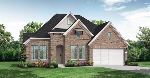 17410 Lynn Orchard Drive, Hockley, TX 77447 (MLS #20823297) :: The SOLD by George Team