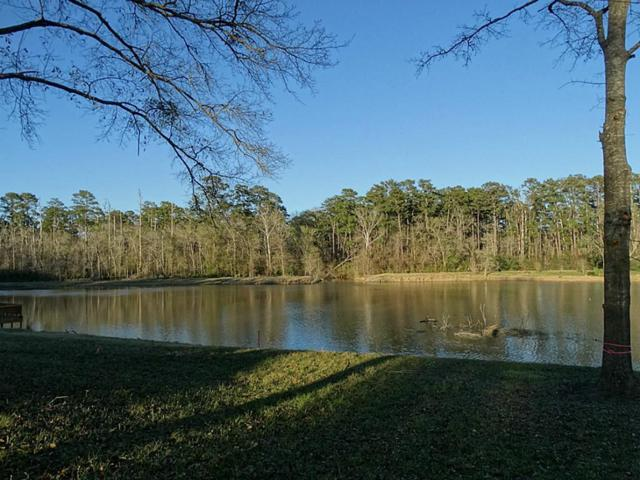 Lot 48 Hunters Creek Drive, Huntsville, TX 77340 (MLS #20860119) :: The SOLD by George Team