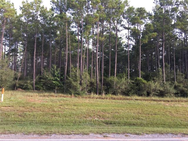 29113 Village Bend, Magnolia, TX 77355 (MLS #20893166) :: Giorgi Real Estate Group