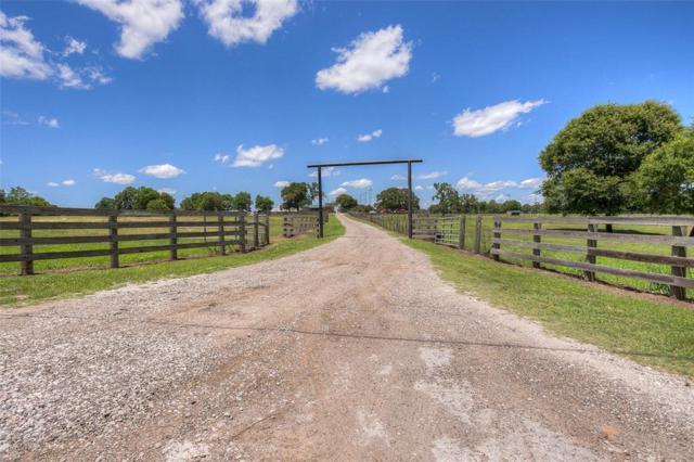 51 Bird Farm Road, Huntsville, TX 77320 (MLS #20902222) :: The Jill Smith Team