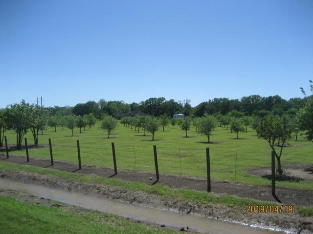 1225 Fm 723, Rosenberg, TX 77471 (MLS #20903910) :: The SOLD by George Team