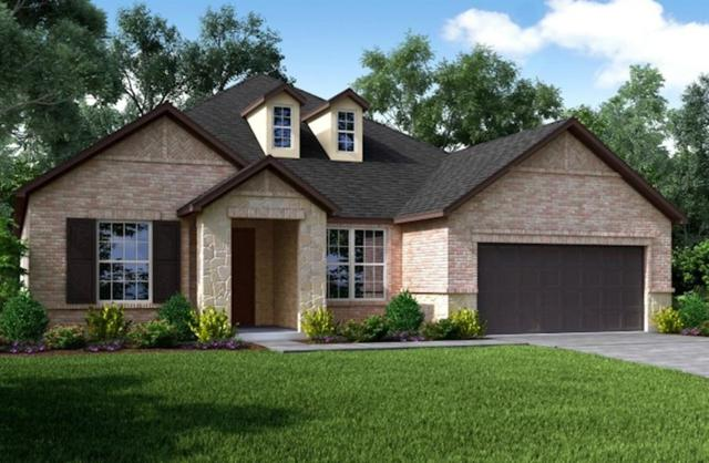 20134 Desert Foal Drive, Tomball, TX 77377 (MLS #20941322) :: Giorgi Real Estate Group
