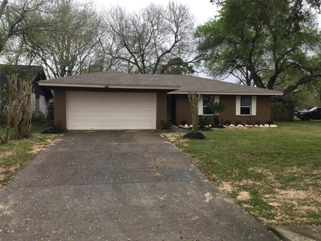16903 Creek Line Drive, Friendswood, TX 77546 (MLS #20944875) :: The SOLD by George Team