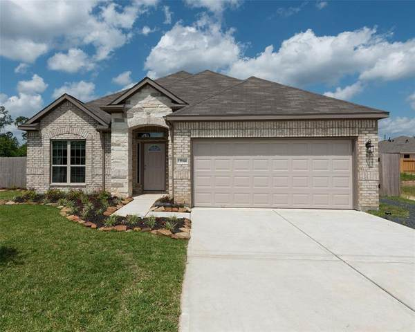 915 Golden Willow Lane, Conroe, TX 77304 (MLS #2098656) :: The Bly Team