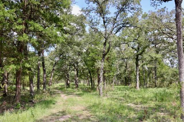 0010 County Road 157, Bedias, TX 77831 (MLS #21006640) :: The SOLD by George Team