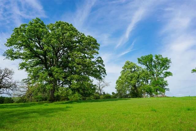 966 Watson Road, Normangee, TX 77871 (MLS #21045939) :: Ellison Real Estate Team