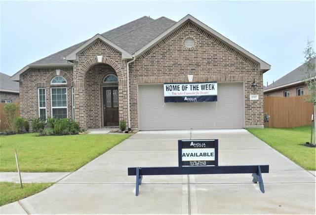 10307 Ritter Run Drive, Iowa Colony, TX 77583 (MLS #21093745) :: The Jill Smith Team
