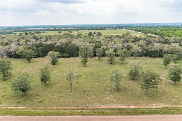 9 Armstrong Derry Road, Flatonia, TX 78941 (MLS #2112243) :: Connect Realty