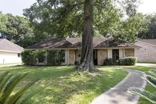 3810 Birch Villa Drive, Houston, TX 77345 (MLS #21247845) :: The Parodi Team at Realty Associates