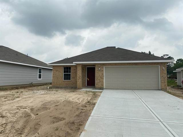 23336 Sandpiper Trail, Spring, TX 77373 (MLS #21328731) :: The SOLD by George Team