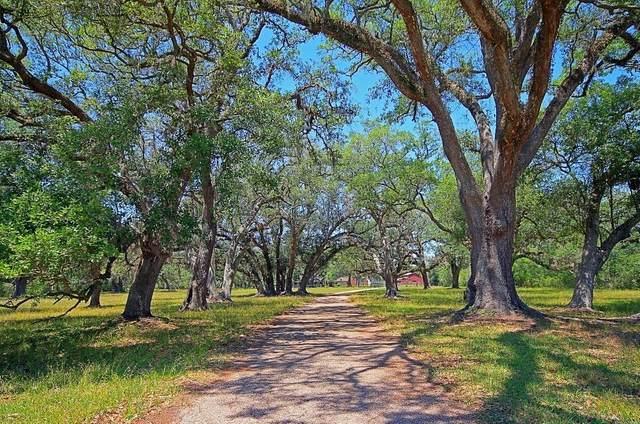 501 Brit Bailey Boulevard, Angleton, TX 77515 (MLS #21392517) :: Christy Buck Team