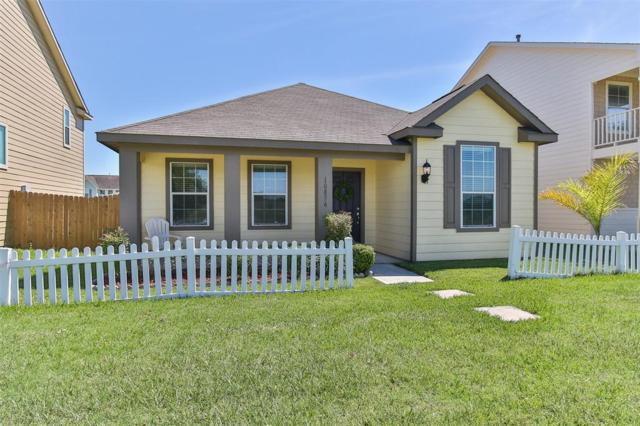 10856 S Lake Mist Lane, Willis, TX 77318 (MLS #21481444) :: The SOLD by George Team