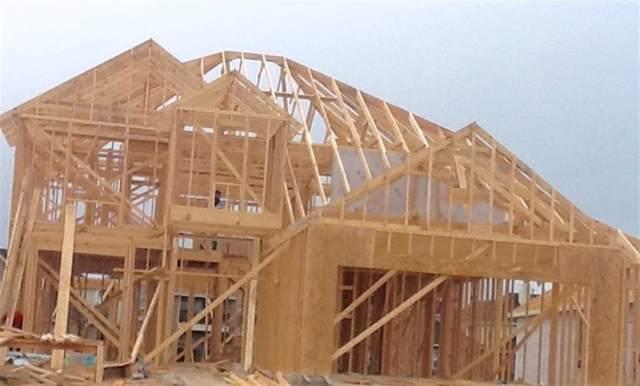 4043 Siderno Drive, Missouri City, TX 77459 (MLS #2151624) :: Texas Home Shop Realty