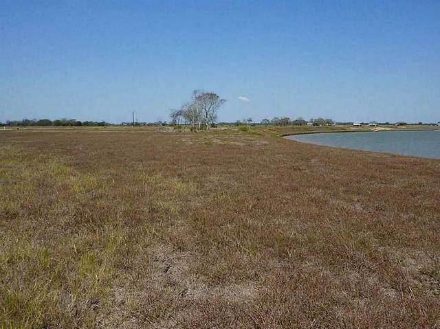 41 Windswept Drive, Port Lavaca, TX 77979 (MLS #21530616) :: Texas Home Shop Realty