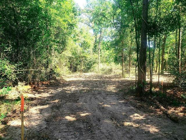 TBD Shady Lane Road, Plantersville, TX 77363 (MLS #21554742) :: Connect Realty