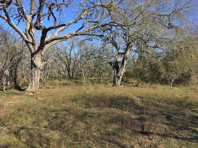 TBD Farm/Market 531, Shiner, TX 77984 (MLS #21567422) :: The Sansone Group