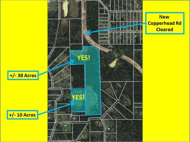 0000 Turtle Dove, Magnolia, TX 77355 (MLS #21664167) :: Texas Home Shop Realty