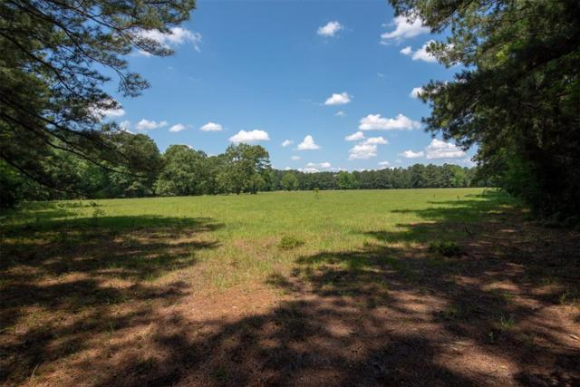 tbd County Road 2770, Woodville, TX 75979 (MLS #21679089) :: The SOLD by George Team