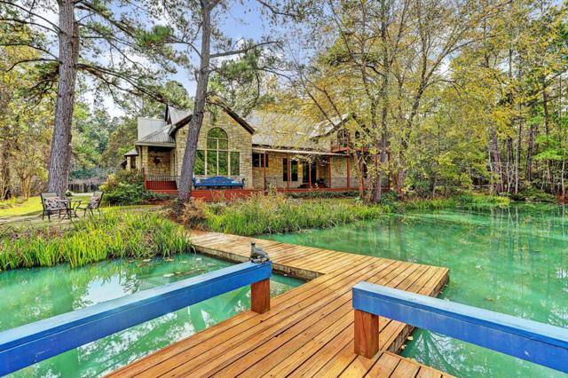 21311 Fitz Lane, Magnolia, TX 77355 (MLS #21728325) :: The Collective Realty Group