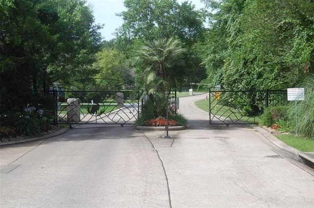 249 E Blue Heron Drive, Montgomery, TX 77316 (MLS #21736512) :: Green Residential