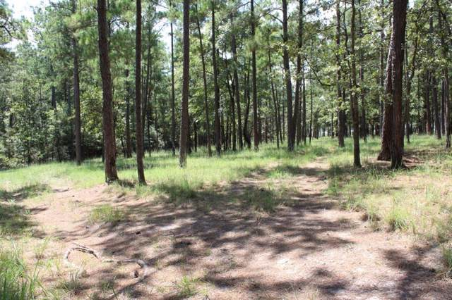 Lots 62, 63, 64 Sec 35, Crooked Branch Road, Brookeland, TX 75931 (MLS #21774730) :: The Bly Team