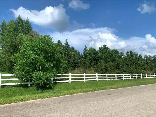 0 W Border Oak Drive, Magnolia, TX 77354 (MLS #2212573) :: EW & Associates Realty, LLC