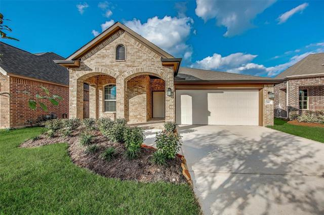11 Florentino Vine Place, The Woodlands, TX 77354 (MLS #22141323) :: Team Parodi at Realty Associates