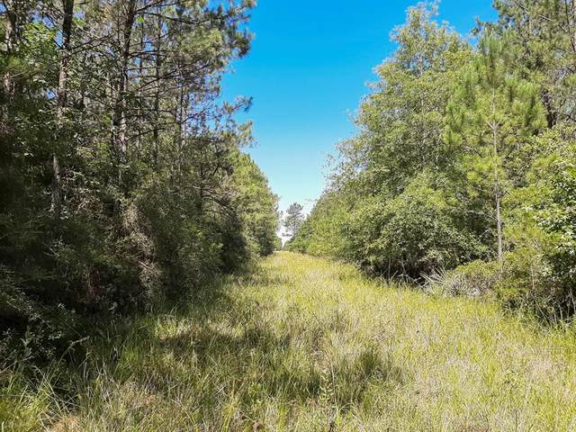 000 Pinewood Forest, Devers, TX 77538 (MLS #22182394) :: Michele Harmon Team
