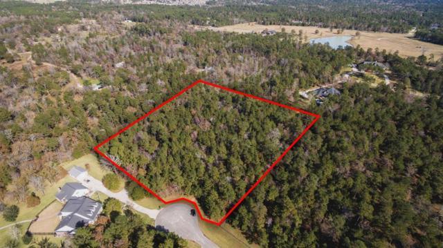 28013 Arrowhead Trail, Magnolia, TX 77355 (MLS #22481675) :: Giorgi & Associates, LLC