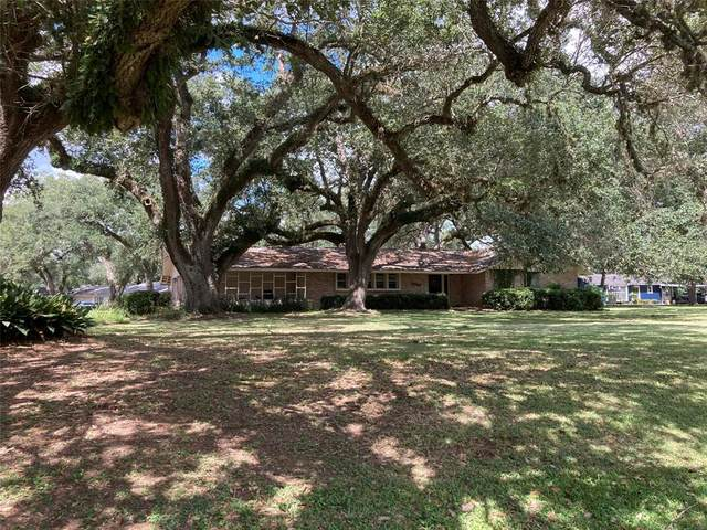 5003 Fm 442 Road, Boling, TX 77420 (MLS #22494197) :: The Bly Team
