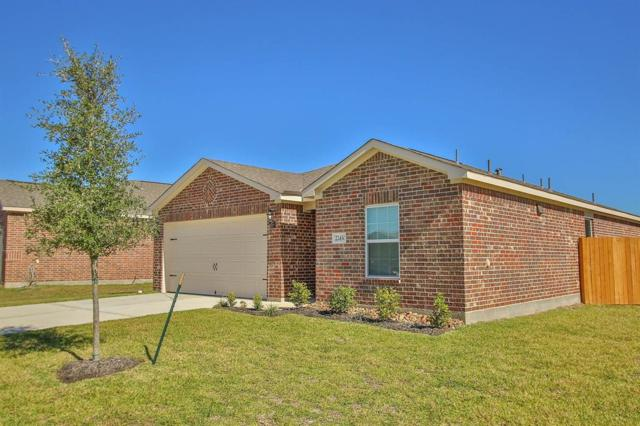 22715 Overland Bell Drive, Hockley, TX 77447 (MLS #22525954) :: The Heyl Group at Keller Williams