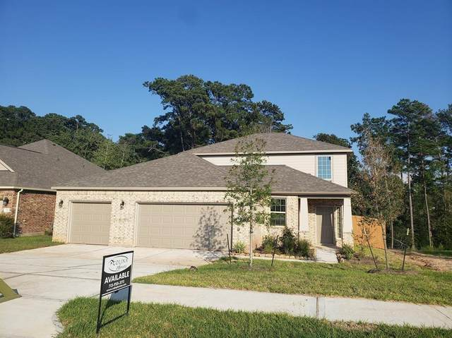 800 Dogberry Lane, Conroe, TX 77304 (MLS #22571606) :: Giorgi Real Estate Group