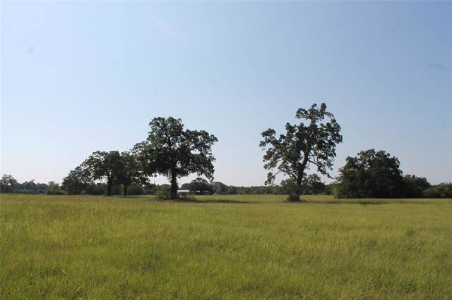 8297 County Road 103, Iola, TX 77861 (MLS #22593286) :: The SOLD by George Team