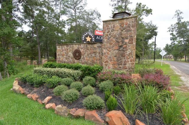 Lot 51 Sundog Road, Huntsville, TX 77340 (MLS #22636240) :: The SOLD by George Team